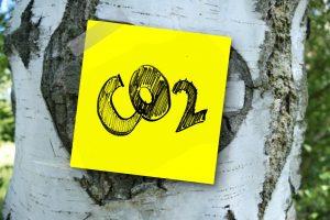 Tout savoir sur le ciment bas carbone